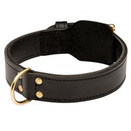 Training 2 Ply Leather Black Russian Terrier Collar