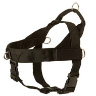Black Russian Terrier Harness Nylon with Patches