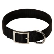 2 Ply Nylon Black Russian Terrier Collar