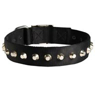 Exclusive Nylon Black Russian Terrier Collar with Awesome Nickel Cones