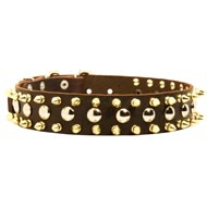 Spiked and Studded Black Russian Terrier Leather Collar