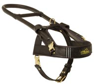 Guide and Assistance Leather Black Russian Terrier Harness