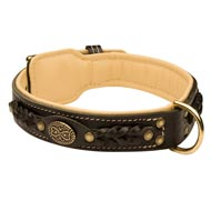 Black Russian Terrier Leather Collar Braided