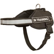 Nylon Black Russian Terrier Harness with Reflective Strap for Training, Walking, Police Service, SAR and More