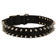 Black Russian Terrier Nylon Collar Spiked
