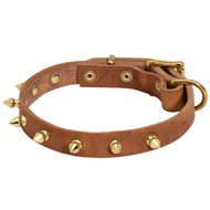 Walking Designer Leather Black Russian Terrier Collar with Brass Spikes