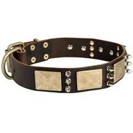 Designer War-Style Leather Black Russian Terrier Collar with Spikes and Plates