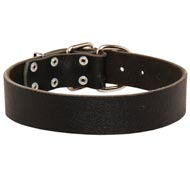 Wide Leather Black Russian Terrier Collar for Training and Walking