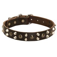 Leather Black Russian Terrier Collar With Studs and Pyramids