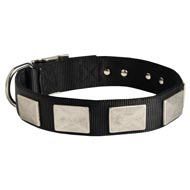 Nylon Black Russian Terrier Collar Massive Nickel Plates