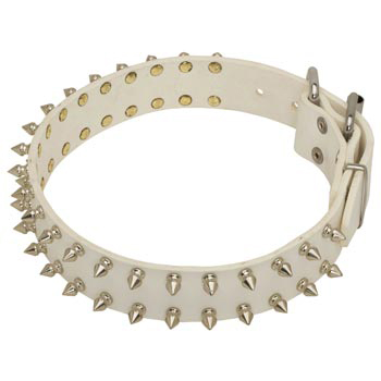 Spiked White Leather Collar for Black Russian Terrier Walking