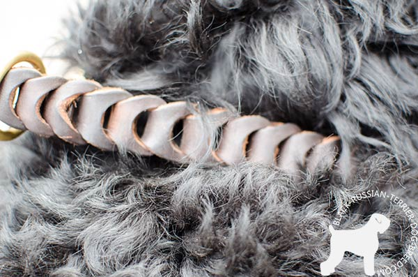 Braided Black Russian Terrier leather choke collar