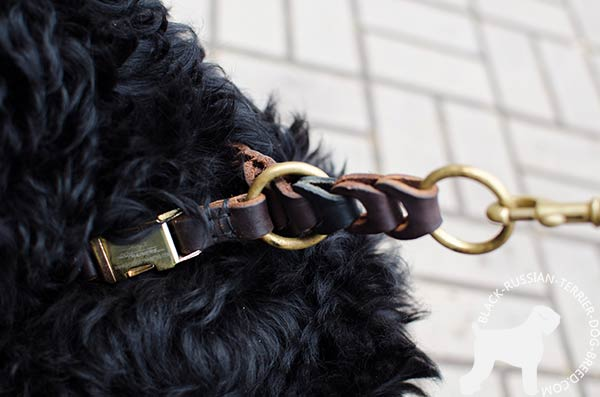Black Russian Terrier genuine leather choke collar with quick release buckle