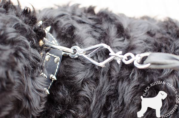 Black Russian Terrier collar with dependable nickel hardware