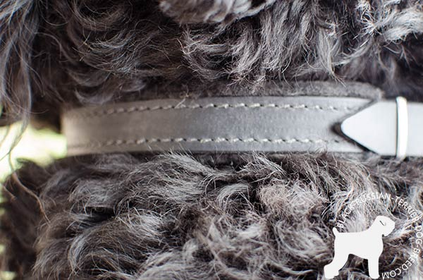 Felt padded reliable Black Russian Terrier collar