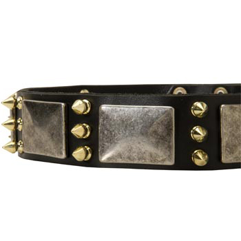 Stylish Leather Dog Collar for Black Russian Terrier