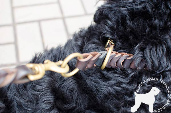 Black Russian Terrier brown leather collar of high quality with quick release buckle for improved control