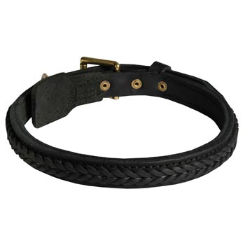 Braided Leather Collar for Black Russian Terrier