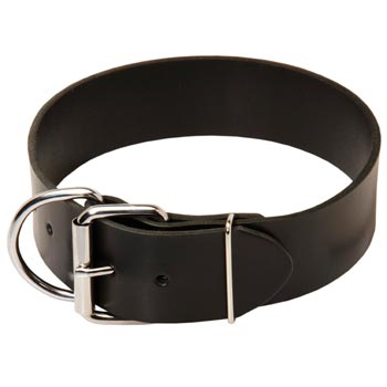 Black Russian Terrier Leather Collar of Extra Width