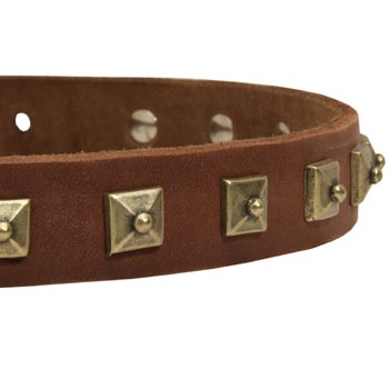Black Russian Terrier Leather Collar With Square  Studs