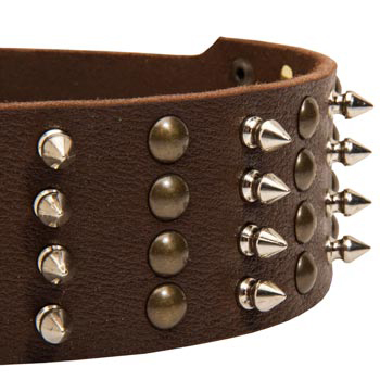 Black Russian Terrier Leather Collar with Rust-proof Fittings