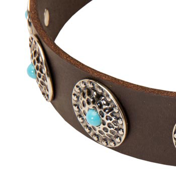 Blue-Stones Leather Black Russian Terrier Collar