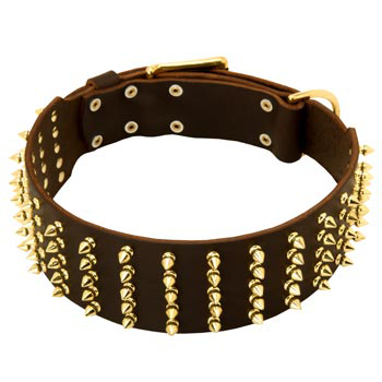 Fashionable Spiked Leather Black Russian Terrier Collar