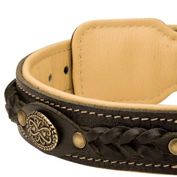 Leather Walking Fashion Collar for Black Russian Terrier