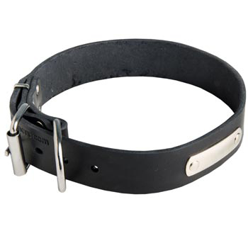 Leather Black Russian Terrier Collar for Identification