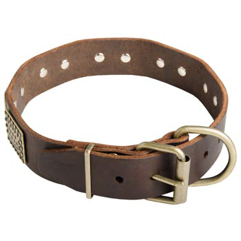 War-Style Leather Collar for Black Russian Terrier