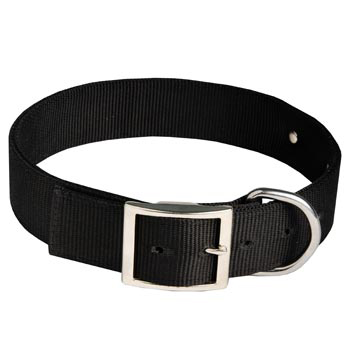 Black Russian Terrier Training Collar with ID Tag