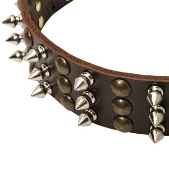 3 Rows of Spikes and Studs Decorative Black Russian Terrier  Leather Collar