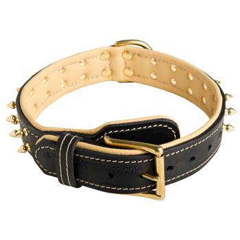 Leather Dog Collar Spiked Adjustable for Black Russian Terrier Walking