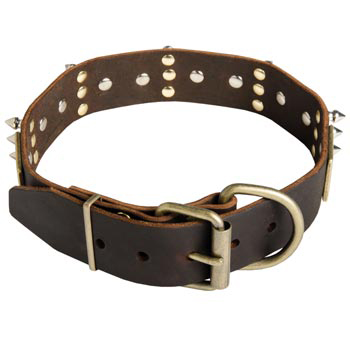 Spiked Leather Black Russian Terrier Collar