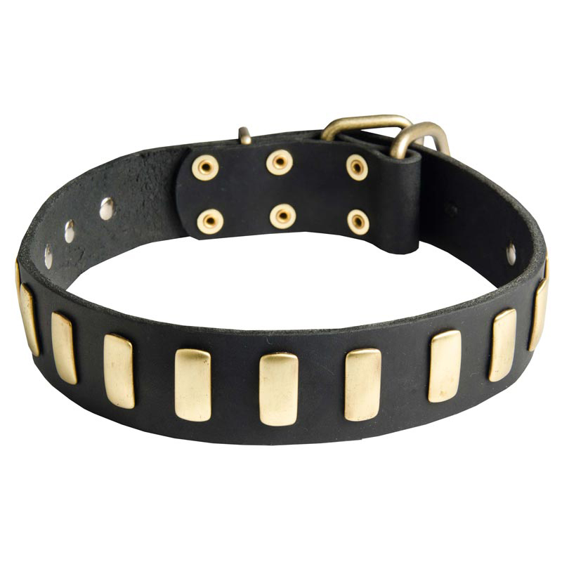 Black Dog Wear Whippet Collar