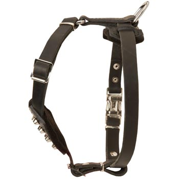 Leather Black Russian Terrier Puppy Harness for Comfy Walking