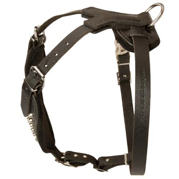 Custom Made Leather Black Russian Terrier Harness