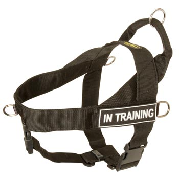 Black Russian Terrier Nylon Harness with ID Patches