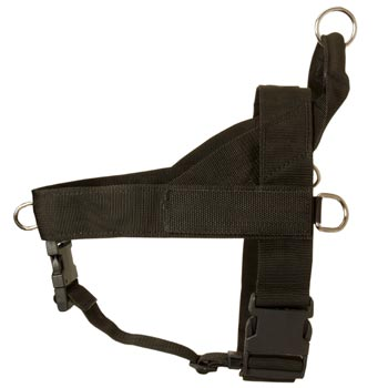 Black Russian Terrier Harness Nylon for Comfy Walking