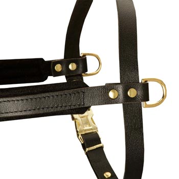 Training Pulling Black Russian Terrier Harness with Sewn-In Side D-Rings