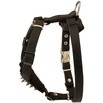 Black Russian Terrier Leather Harness for Puppy Walking and Training