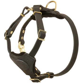 Light Weight Leather Puppy Harness for Black Russian Terrier