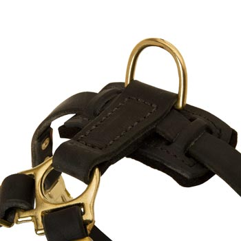 D-ring on Leather Black Russian Terrier Harness for Puppy Training
