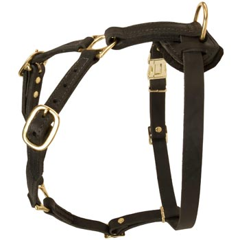 Tracking Leather Dog Harness for Black Russian Terrier