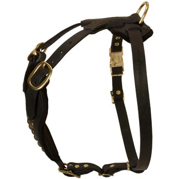 Easy Adjustable Leather Black Russian Terrier Harness