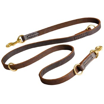 Leather Leash for Black Russian Terrier Everyday Walking