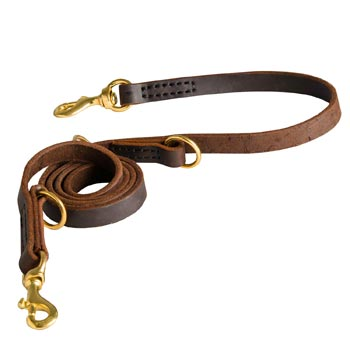 Strong Leather Leash for Black Russian Terrier Successful Training