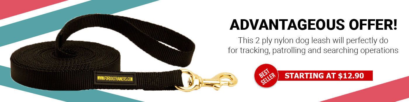 Nylon Black Russian Terrier Leash for Tracking and Training