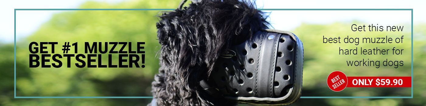 Leather Black Russian Terrier Muzzle for Agitation Training and Military Service